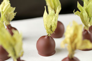 Sasa Demarle Recipe For Chocolate Covered Gooseberries
